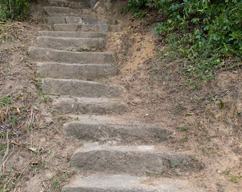 The Stairs in Strawberry Fields Jamaica