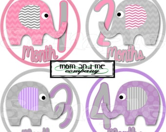 12 Baby Girl Elephant Monthly photo Stickers Baby Stickers Baby Shower gift 1- 12 Months onepiece sticker infant monthly stickers