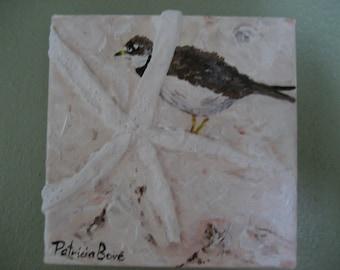 Mixed Media Original Bird Art 6 X 6 Canvas