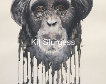 Watercolour Chimpanzee Prints