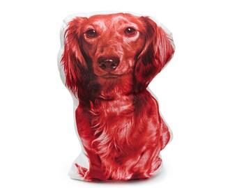 Dachshund Pillow, Dachshund Cushion, Dachshund, Sausage Dog Pillow, Weiner Dog Pillow, Dachshund Picture,  Dachshund lover, Dog Pillow, Dog