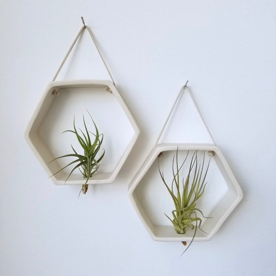 Porcelain Honeycomb Air plant Holder, Geometric Wall Hanging Planter