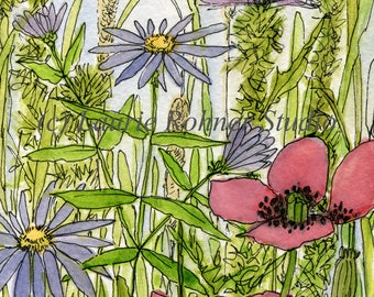 Floral Watercolor Botanical Asters Poppies Garden Flowers Wildflowers
