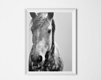 Black & White Horse Print, Horse Photography, Animal Printable, INSTANT DOWNLOAD, Black and White Photo, Modern Home Decor, Digital Download