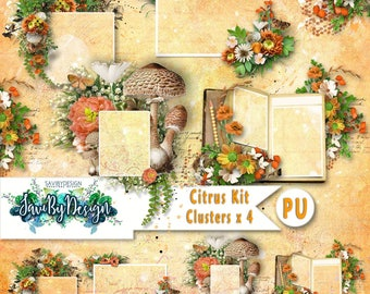 Digital Scrapbooking Clusters set of 4 CITRUS premade embellishment png clusters to make immediate scrap page