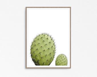 Impression de cactus, Cactus wall art, Cactus, Cactus art imprimable, plante Cactus, désert Art, décor de cactus, impression, photographie de cactus cactus du désert