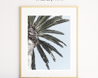 Palm Tree Print, Tropical Wall Art, Palm Photo, Palm Tree Photography, Beach Print, Palm Tree Wall Art, Tropical Print, Digital Download