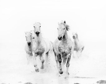 "Horse Art, Black and White Prints, Nature Photography, Horse Photography Print, Horse Wall Art, Fine Art Photography ""Ghost Riders"""