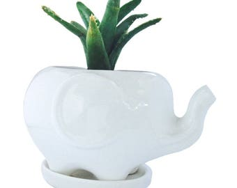 Ceramic Elephant Succulent Planter, Makes a Great White Elephant Gift, Plants NOT Included