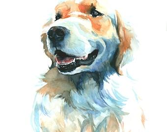 "Custom Pet Portrait - 8"" x 10"" (20.3cm x 25.4cm) or 11"" x 14"" (27.9cm x 35.6cm)"