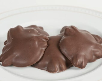 Turtles - Caramel, Pecans and Chocolate  (1 pound)