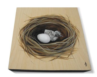 Baby Dove Bird nest painting - nest with eggs and chick - bird's nest art - nature mothers day gift - baby bird in a nest - bare wood grain