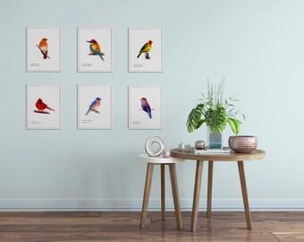 Bird Art Prints- Colorful - Art Prints - Choose Six