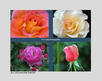 All Occasion Series (Set of 4 Greeting Cards)