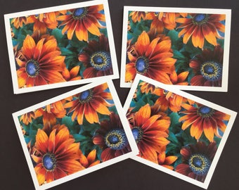 Package of 4 Bright and Sunny Daisies Note Cards