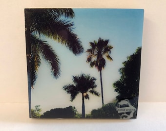 ALAMOS SONORA Ponte Trucha (2X2 photo) handmade refrigerator magnets magnet