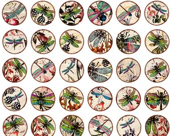 Dragonflies Circles Bottle Caps - Ceramic Waterslide Decal - Enamel Decal - Fusible Decal - 88292