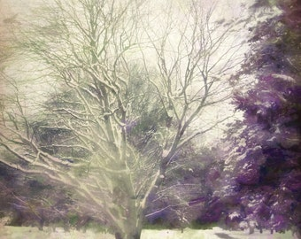 Printable Fine Art Photography *Instant Digital Download* ~ Saratoga Springs NY~
