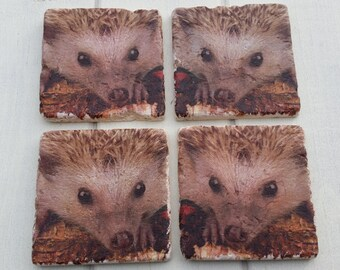 Hedgehog Stone Coaster Set of 4 Tea Coffee Beer Coasters