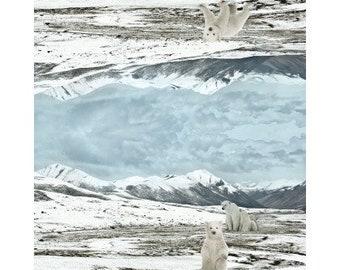Jersey, Stenzo, cloth panel-Polar bears