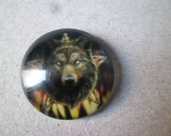 x 1 glass dome cameo/cabochon pattern Wolf 20 mm round