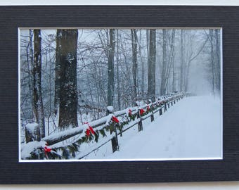 Set of 3 Matted 4x6 Black and White Winter Photo Collection, Signed by the Artist