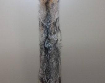 Coyote Pelt | Coyote Fur | Coyote Hide