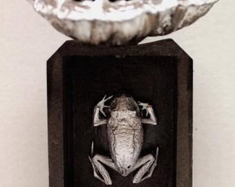 Chrome Frog, Lotus Pod, Original Artwork, Assemblage Art, Mixed Media, Oddity, Winjimir, Home Decor,  Art, Gift, Frog, Taxidermy, Curiosity