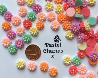 Pack of 10 mixed colours flower embellishments