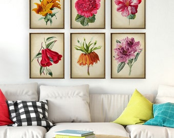 BOTANICAL print SET of 6 art prints, botanical poster, instant collection, flower poster, flowers print set, Wall Decor, Floral Art, Garden