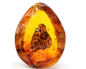 Resin amber butterfly insect stone pendant for necklace