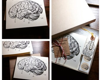 Brain Stationary Card Set - Set of 6 - Neuroscience, Science, Psychology Stationary // or single greeting card