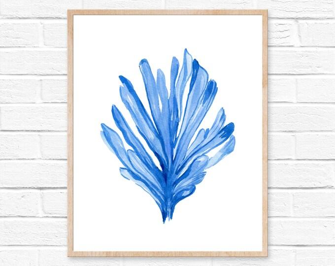 Sea Coral No. 102, Blue Watercolor Print, Coastal Print, Sea Life Art Print, Coral Art Print, Watercolor Art Print, Giclee Print, Watercolor