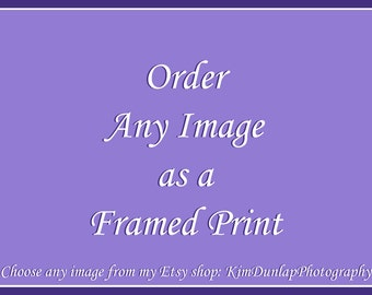 ANY Image with MAT & FRAME! Custom Framed Photograph, Large Wall Decor, Oversized Photography Artwork, Living Room Picture, Matted Art Photo