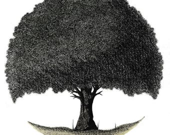 Summer tree, 2/4 series