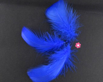Blue 4-10cm x 10 feathers