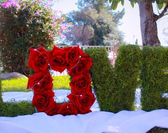 LOVE - floral letters/photo props/event decor