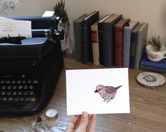 Brown Bird – Print