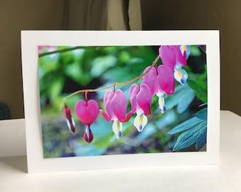 Bleeding Hearts - 5x7 Blank Greeting Card - Fine Art Photograph - Stationary Gift