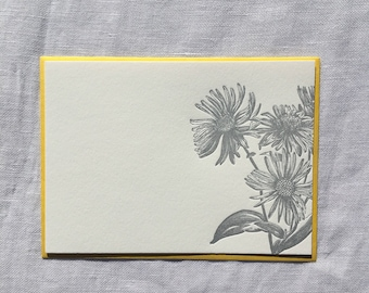 Silver Aster Letterpress Notecards