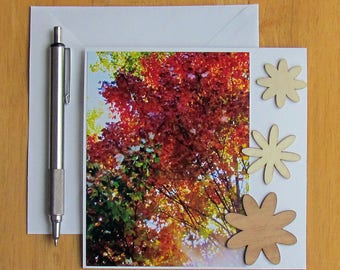 Autumn Leaves Note Card, Stationery, Blank Cards, Photo Note Cards, Tree Note Cards, Nature Note Cards, Handmade Cards, Thank You Cards