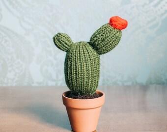 Amigurumi Cactus Tejido A Crochet Regalo Original : Best amigurumis images free pattern amigurumi
