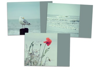 "3 Postcards ""SeaState"" - postcard card photography photo seagull ocean water beach wave poppy summer holiday"