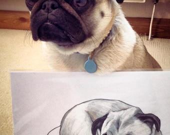 Pug drawing, custom pug drawing, pug wall art, custom pug art, pug artist, pug portrait, draw my pug, pug owner gift, personalised pug art