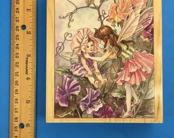 SweetPea Flower Fairies #90026
