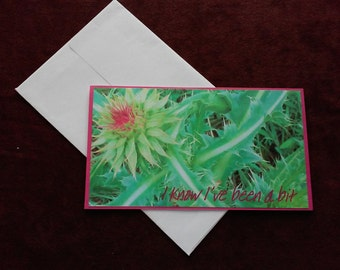 Prickly Greeting Card - I'm Sorry