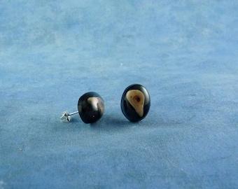 Bird Skull Encapsulated Specimen Earrings, Handmade Biology Jewelry