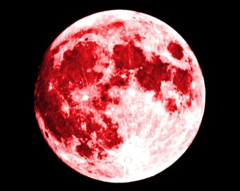 RED MOON Perfume Oil: Red musk, hibiscus, dark currants, Fantasy Perfume, Gothic Perfume
