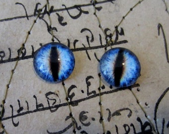 Pair of Taxidermy Glass Dragon, Cat, Monster Craft Eyes, Blue 10mm, 14mm, 16mm