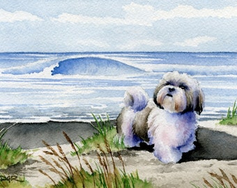 SHIH TZU Art Print Watercolor Signed by Artist DJ Rogers